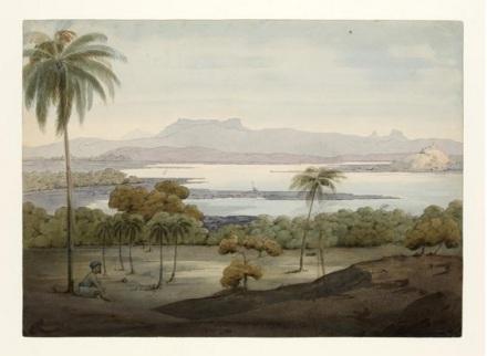 Mumbai- Thana Creek 1791