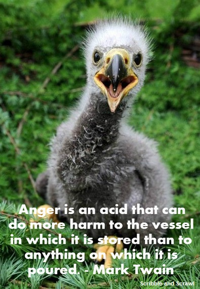 Anger Quote 2