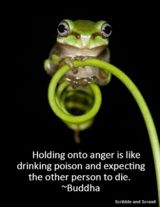 Anger Quote 4
