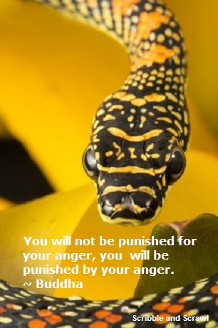 Anger Quote 5