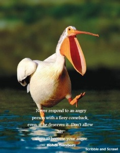 Anger Quote 7