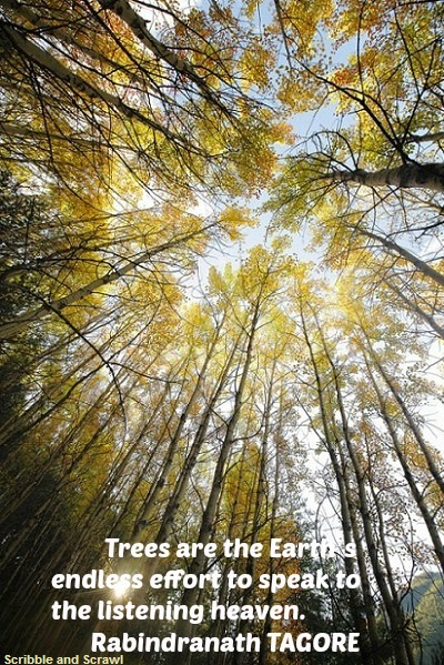 Nature quote by Tagore