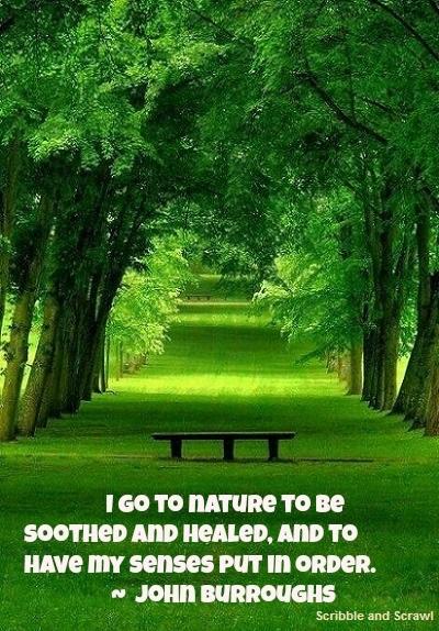 Nature rejuvenates quote