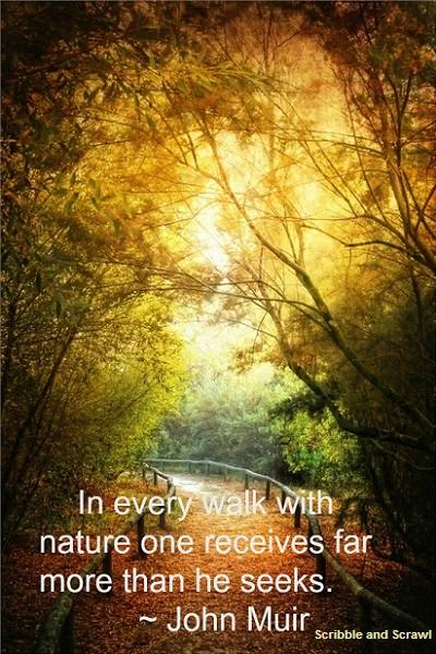Nature Walk quote
