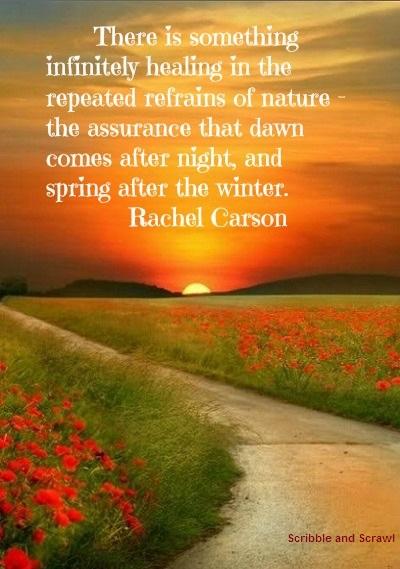 Nature heals quote