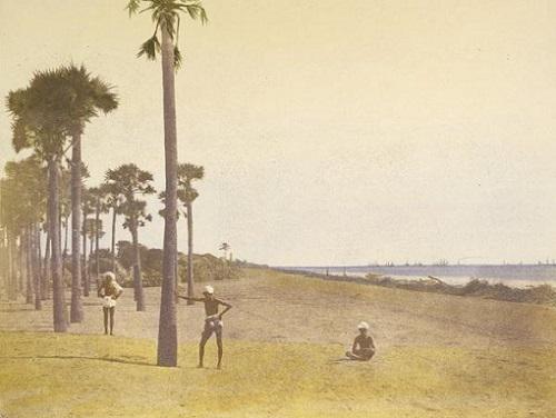 Outskirts of Madras, 1851