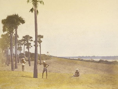 Outskirts of Madras, 1851