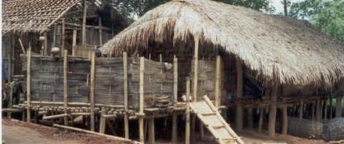 Traditional Karbi House