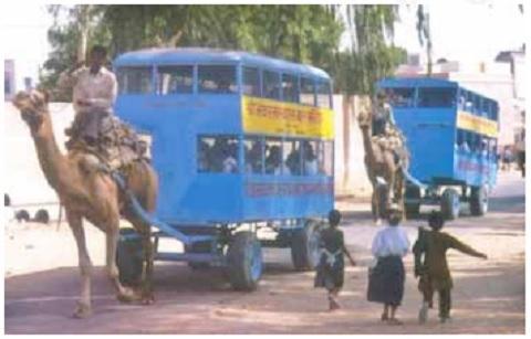Camel Bus, Rajasthan