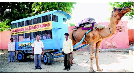 camel_bus